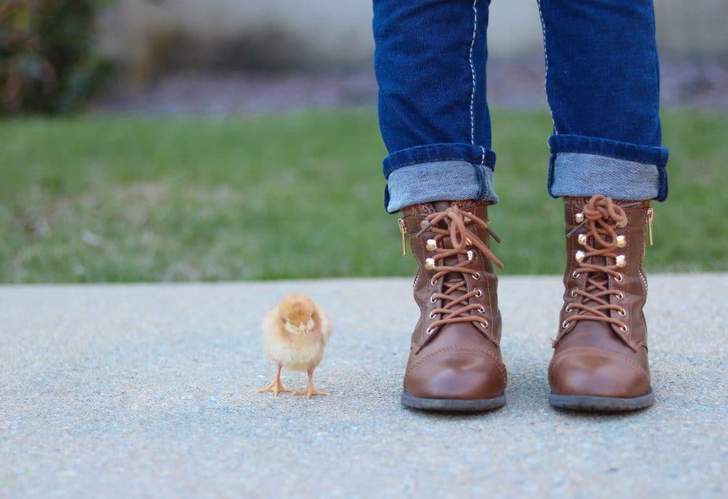 Ankle Boots and Variety of Looks with Different Outfits 1